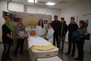 Kürbis im CT in Mainz